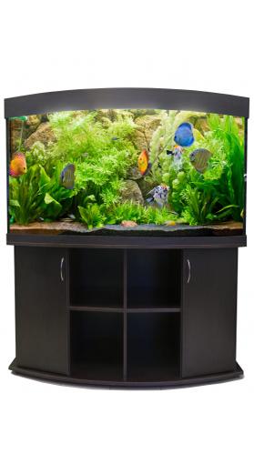 Aquas Панорама 500 литров